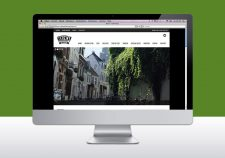 website-bloei-in-arnhem